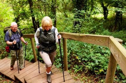 Na procházky si neberte kratší kalhoty, protože právě skrze dolní partie se na vás kliště dostane