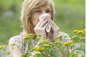 alergie žena